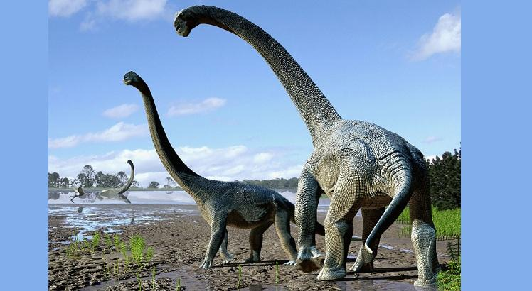 Savannasaurus elliottorum. AFP PHOTO / NATURE / Australian Age of Dinosaurs Museum of Natural History TRAVIS TISCHLER